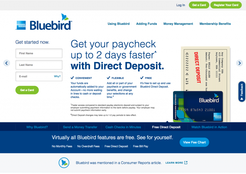 BLUEBIRD CHECKS Issued By AMERICAN EXPRESS